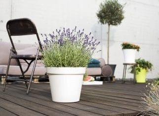 Aranżacja balkonu lub tarasu. Odpoczywaj pięknie!