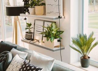 Projekt salonu z roślinami
