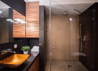 Dark bathroom with big shower
