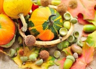 Dekoracje na jesień do salonu