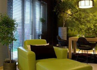 Zielone fotele do salonu