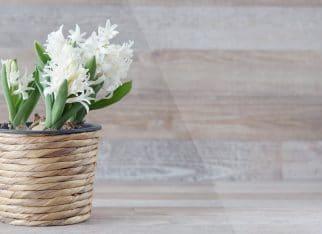 Jak ułożyć kwiaty luzem na stole?