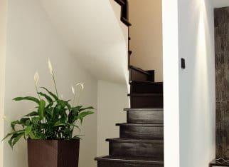 Czarne schody