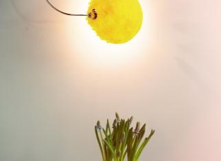 Wielkanoc. Modne inspiracje od Luminosfery