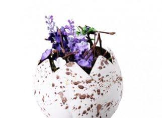 Stroik Flowershell Home&You - 15 zł