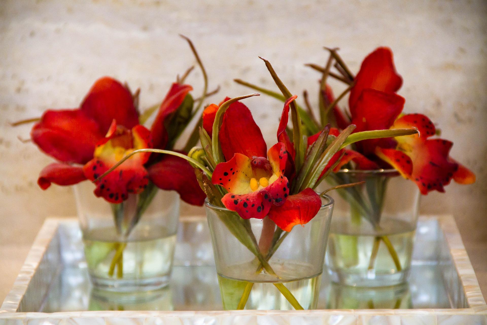 Dekoracja Stołu Jak Ułożyć świeże Kwiaty Na Stole Deko
