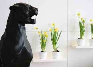 Przedstawiamy nasz pomysł na żółć we wnętrzach. ZObacz jak urządziliśmy nowoczesny salon.