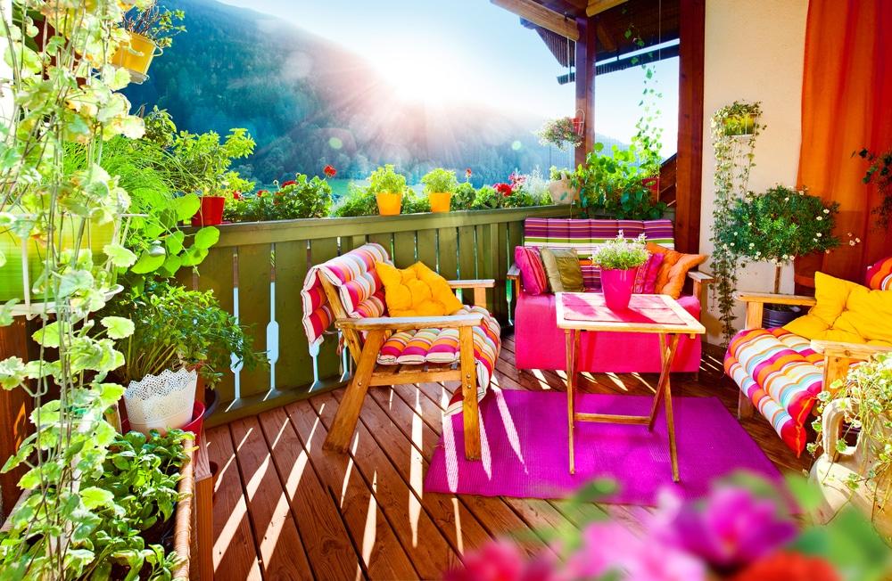 Zobacz, jak pielęgnować kwiaty na balkonie, aby zachwycały swoim pięknem.