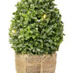drzewko-dekoracyjne-z-lampkami_7280-zl_fot-eurofiran