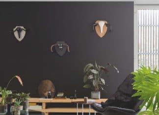 Elegancka czerń na ścianie w salonie? Zobacz nasze aranżacje i powiedz tak.