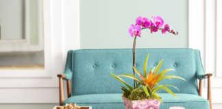dekoracja salonu - stroczyk