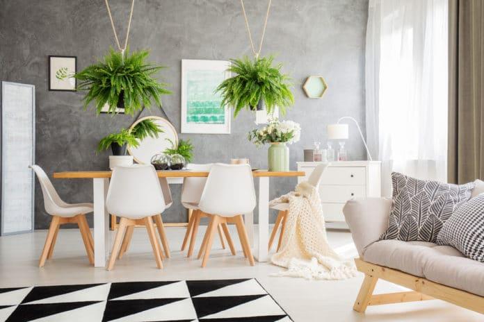 Aranżacja salonu z roślinami - paprotkami