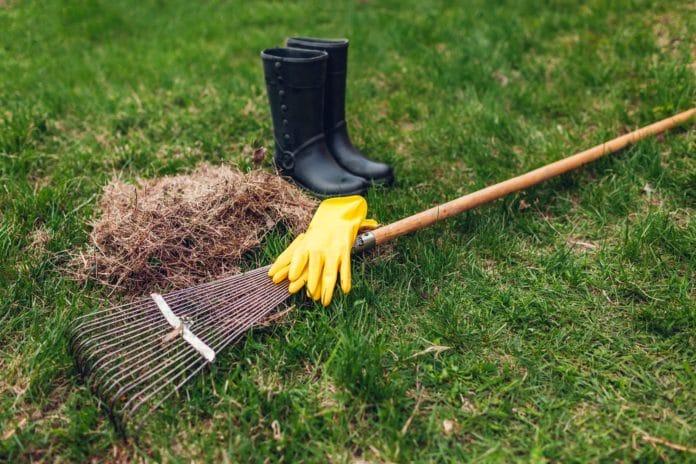 Przygotowanie trawnika na wiosnę