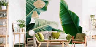 Fototapety - liście bananowca