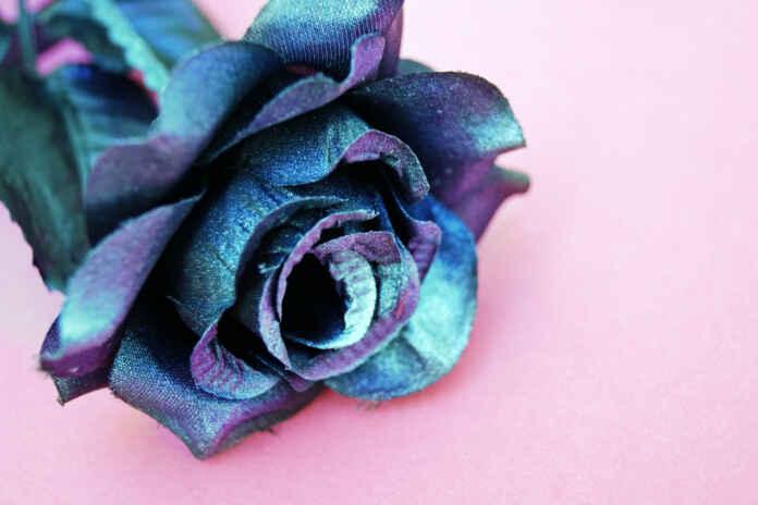 Fakty i mity o sztucznych kwiatach